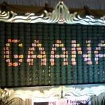Dancing Flowers Display